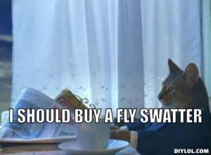 resized_i-should-buy-a-boat-cat-meme-generator-i-should-buy-a-fly-swatter-b78a3c